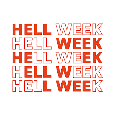 Hell Week Sticker by Freeletics for iOS & Android | GIPHY