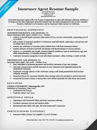 Insurance Agent Sample Resume