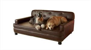 dog lounge chair lovely sofas dog lounge chair dog armchair sofa beds leather couch dog