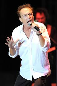 David Cassidy Becomes Extremely Ill After Organ Failure ...