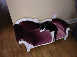 fancy dog beds furniture. Fancy Luxury Dog Beds Furniture
