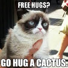 Awesome funny grumpy cat via Relatably.com