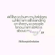 Scorpio Quotes Extraordinary Funny Scorpio Quotes Packed With A And I Want People To Know How