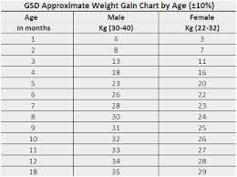Rigorous German Shepherd Growth Chart Weight Perfect Weight
