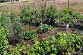 Garden Plot Design Ideas Garden Plot Design Garden Design Ideas