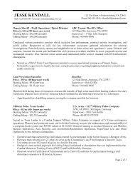 Federal Resume Template Resume Template Examples Of Federal Resumes Free Career Resume 15