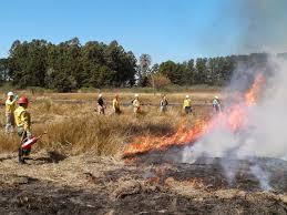 Curso de Quema Controlada y Combate de Incendios Forestales