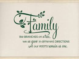 Christian Family Quotes Images Best Of Family Wall Quotes Family Like Branches CODE 24 Pinterest