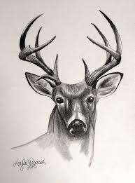 Pin By Alesia Leach On Deer In 2019 Deer Drawing Deer