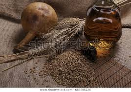Ears Wheat Seeds Bottle Brandy Gourd Stock Photo (Edit Now) 669885226