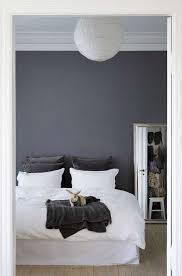 gray wall paintDark Gray Wall Paint  Home Design