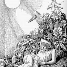 Midsummer Nights Dream Art To Enchant Illustrators Shakespeare