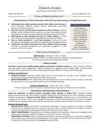 ... Resume Services Jacksonville Florida Unique Online Resume Service ...