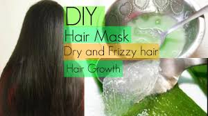 diy hair mask for dry frizzy and fast hair growth insidebeautyno1 you