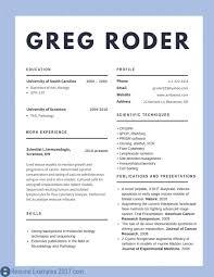 Resume Professional Resume Examples Best Cv To Tryd Summary Skills
