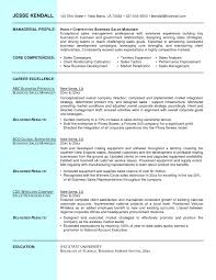 s manager resume summary statement cipanewsletter s manager resume summary statement u2013 job resume samples