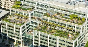 gehry design facebook seattle. Dexter Station Roof Gardens Gehry Design Facebook Seattle