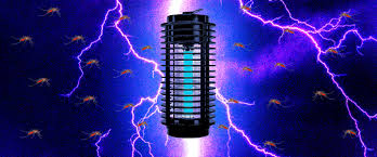 Bug Light Effectiveness An Electrifying History Of The Bug Zapper