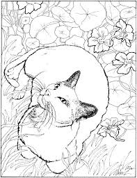 Cats Coloring Coloring Cats Coloring Pages Free Printable Cat Page