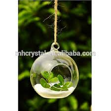 Decorative Hanging Glass Balls Simple Hanging Glass Balls With Plants Or Flower Inside For Wedding