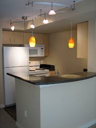 Kitchen Track Light Fixtures Kitchen Renovation Expert Suggests Using Flexible Track Lighting