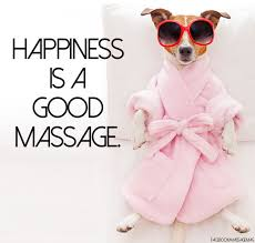 are you interested in massage therapy there are quite a few things to go over if you want to become a professional at giving massages massage chair