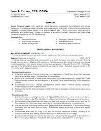 Accounting Director Resume Resume Bank