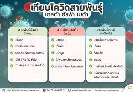 เทียบอาการโควิดสายพันธุ์ เดลต้า อัลฟ่า เบต้า ที่พบเชื้อในไทย