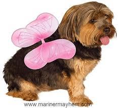 Rubie S Pet Costume Pink Fairy Wings Small To Medium