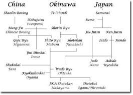 Bjj Lineage Chart A Brief Lineage Of Karate Systems Aikido Martial Arts