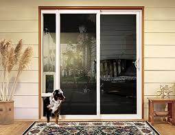 unless you are macaulay culkin criminals usually can t fit through the doggy door and wouldn t want to when they hear the dog