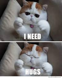 I Need Hugs | WeKnowMemes via Relatably.com