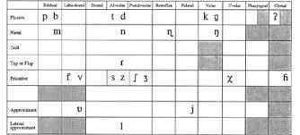 Dutch Linguistics Sound Phonetics