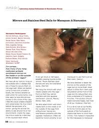 Mirrors and Stainless Steel Balls for Macaques: A Discussion Pages 1 - 4 -  Flip PDF Download | FlipHTML5