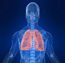 causes lung cancer essay smoking causes lung cancer essay