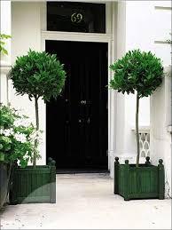 google image result for 1 bp spot rehp5q256z4 tzkkpezwtzi aaaaaaaaayi a2f csmeblc s1600 ball topiary tree large jpg