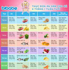 Thực đơn ăn dặm truyền thống cho bé 8 tháng - Tuần 1 (Dành cho bé ăn dặm  tích cực - Ngày ăn 1-2 bữa) - bibabo.vn