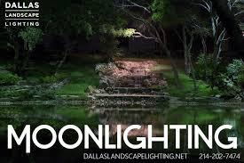 moonlighting drama illumination is art call dallas landscape lighting