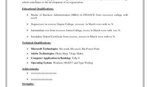 Printable Resume Examples Resume Template