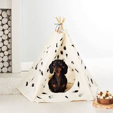 brush stroke cat and dog tipi