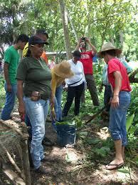 Resultado de imagen de Agroecología y derecho a la alimentación: ¿hay herramientas de cambio a nivel local?