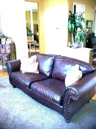 how to clean a couch that has been d on cat on leather couch how home improvement loans navy federal