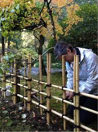 PHOTO: Tying ibo-musubi knots on the tea garden fence.