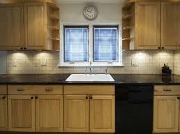 Kitchen Remodel  How Much Do Kitchen Cabinets Cost How Much Does - Kitchen remodeling cost
