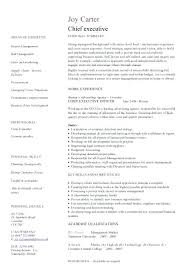 Free Modern Executive Resume Template Executive Resume Template Free Modern Executive Resume Template