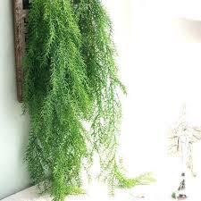 green wall decor ideas
