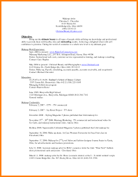 Paid Resume Templates Resume Ideas