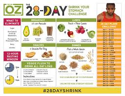 21 Day Plank Challenge Chart The 28 Day Shrink Your Stomach Challenge Instructions The