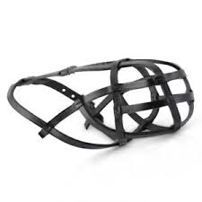 Details About Muzzle Leather Basket