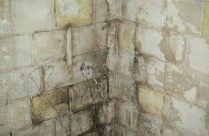 clean basement mold in a cinder block foundation removing mold from basement walls n81